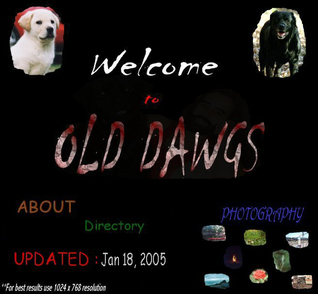 Welcome to OldDawgsS.com - A photography based site. We use image maps for some links so be sure to roll-over all images. There's some hidden surprises. We also use some Javascript to hide e-mail links from robots/spammers...Thanks for visiting OldDawgs.com